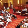 Bill To Prohibit Multiple Years Rent In Abuja Passes Second Reading