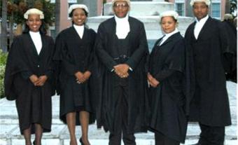 New Lawyers