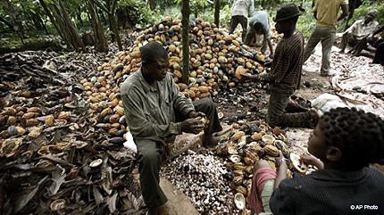 Nigerian Agriculture